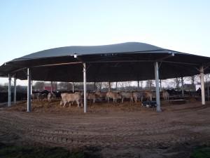 Roundhouse, in aanbouw